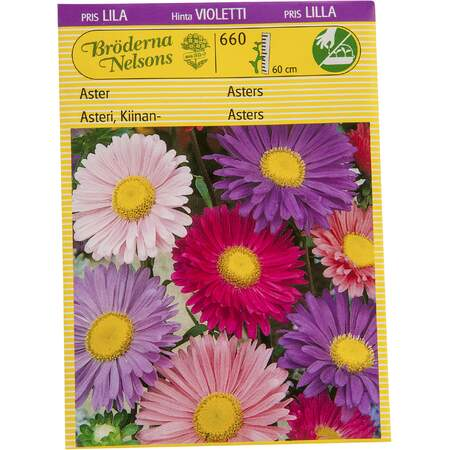 Asters frø